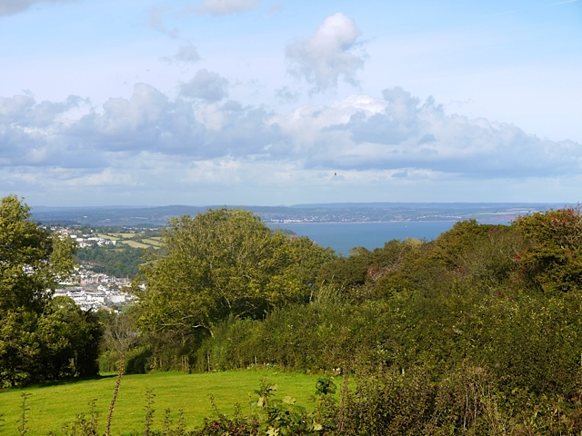 Shaldon View