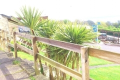 Shaldon Chalets to rent