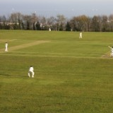 Shaldon Cricket