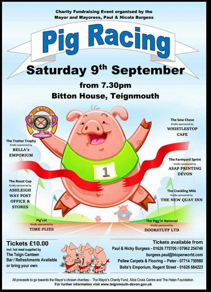 Annual Charity Fundraisier-PIG RACING