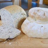 SHaldon Bread & Pizza workshop