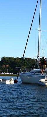 Boat Trips Shaldon