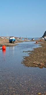 Shaldon Estuary