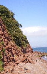 Shaldon Cliffs
